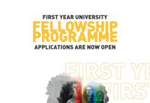 Allan Gray Orbis Foundation First Year University Fellowship Programme 2020 for young South Africans (Fully Funded)