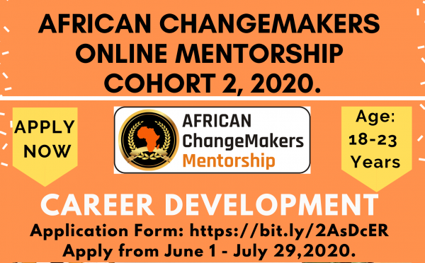 African ChangeMakers Online Mentorship Program 2020 (Cohort 2)