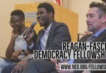 NED Reagan-Fascell Democracy Fellows Program 2021/2022 for democracy activists, journalists, civil society leaders & scholars Worldwide (Fully Funded to Washington DC, USA)