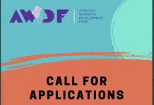 The African	Women's Development Fund (AWDF) mini grants 2020 for African feminist change-makers.