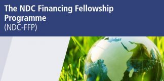 NDC Financing Fellowship Programme 2020