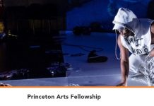 Princeton Arts Fellowships 2020 for Outstanding Artists (Stipend available)