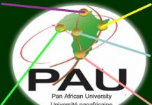 Pan African (African Union) University 2020/2021 (Masters & PhD) Scholarships for young Africans (Fully Funded)