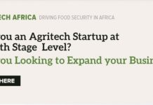 IBiz Africa FoodTech Africa Accelerator 2020 for agri-based enterprises