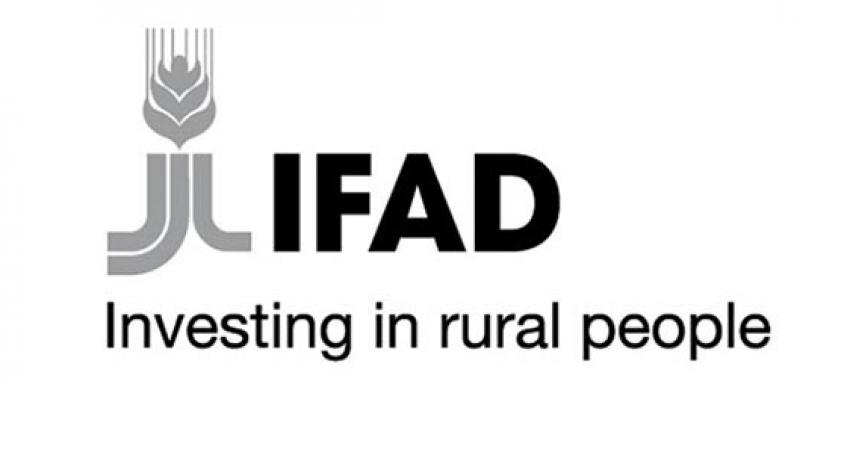 Call for Proposals: IFAD Rural Youth Employment Opportunities to Integrated Agribusiness Hubs 2020