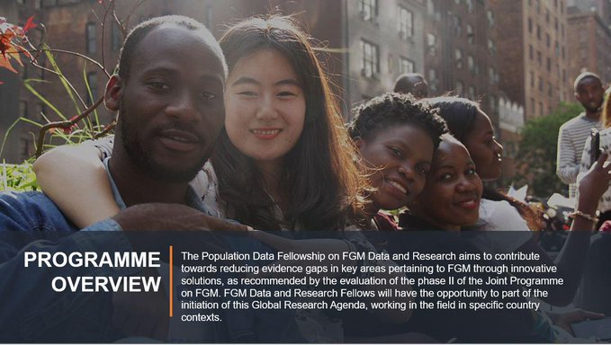 UNV/UNFPA Population Data Fellows Programme 2020/2021 for FGM Data and Research
