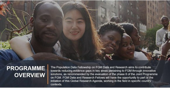 UNFPA/UN Volunteer Population Data Fellowships 2020 for early-career professionals