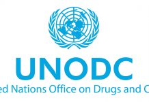 UNOV/UNODC in Vienna is hiring a Computer Information Systems Assistant