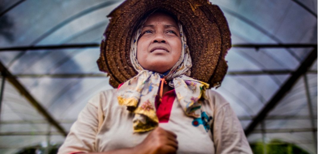 International Fund for Agricultural Development (IFAD) Indigenous People's Awards 2020