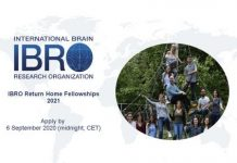 IBRO Return Home Fellowships 2021 for young Researchers from less developed Countries (20,000 euros grant)