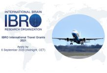 IBRO International Travel Grant Program 2021 for Neuroscientists (up to €1,800 Euros)