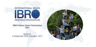 International Brain Research Organisation (IBRO) Return Home Fellowships 2021 (up to 20,000 Euros)