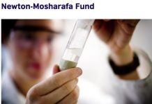 Newton-Mosharafa PhD Programme 2020 for Egyptian Researchers