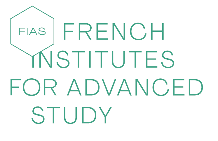 French Institutes for Advanced Study Fellowship Programme 2020 (Funded)