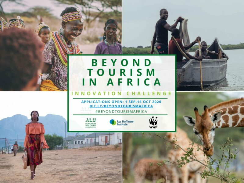 Beyond Tourism in Africa Innovation Challenge 2020 (Win a place in ALU's Incubator + Seed money)