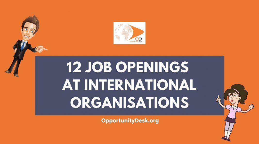 12 Job Openings at International Organisations
