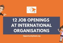 12 Job Openings at International Organisations