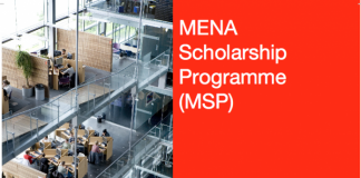 Nuffic MENA Scholarship Programme 2020/2021 for Study in the Netherlands – Round 2