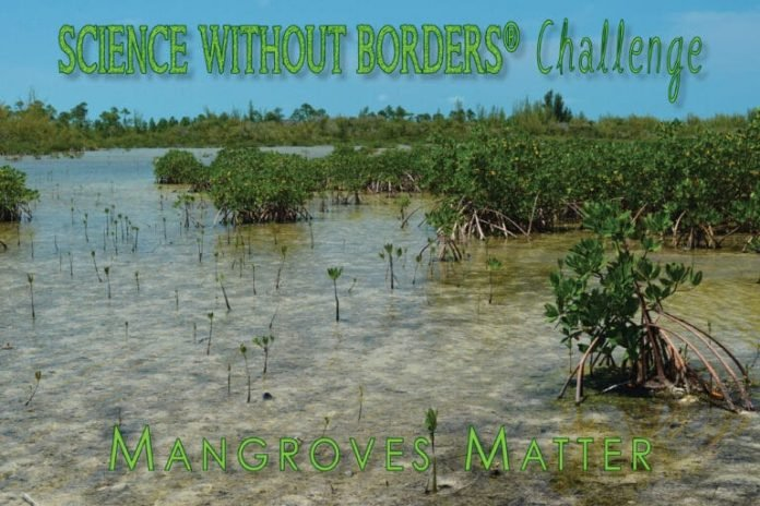 Khaled bin Sultan Living Oceans Foundation's Science without Borders Challenge 2021 International Art Competition (USD$ 1,000 prize)