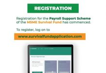 Federal Government of Nigeria Survival Fund Program for Nigerian Small and Medium Enterprises