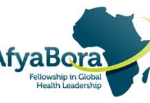 Afya Bora Consortium Fellowship 2021 in Global Health Leadership for health professionals (monthly stipend available)