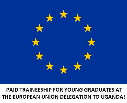 European Union paid Traineeship in EU Delegations worldwide for young graduates