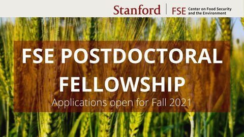 Stanford Center on Food Security and the Environment (FSE) Postdoctoral Fellowship 2021 for young Scholars