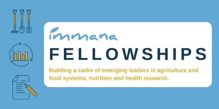 IMMANA Fellowships 2021/2022 for emerging leaders in agriculture, nutrition, and health research
