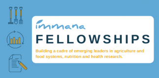 IMMANA Fellowships 2020/2021 for Emerging Leaders in Agriculture, Nutrition, and Health Research (Funded)