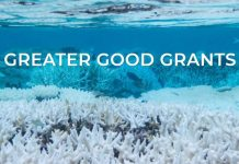 Banyan Tree Global Foundation (BTGF) Greater Good Grants 2021 (up to US$10,000)
