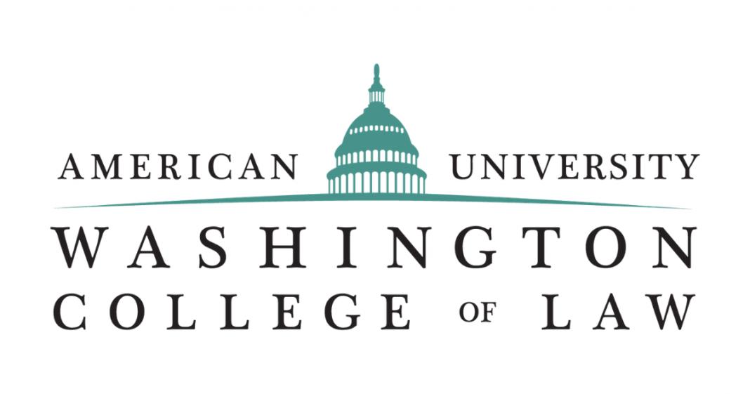 American University Washington College of Law Human Rights Essay Award 2021