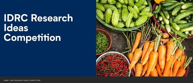 Canada's International Development Research Centre (IDRC) Research Ideas Competition 2021 for researchers from developing countries