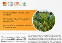 Young Africa Works IITA Project & Training Program 2020 For young Nigerian Agripreneurs