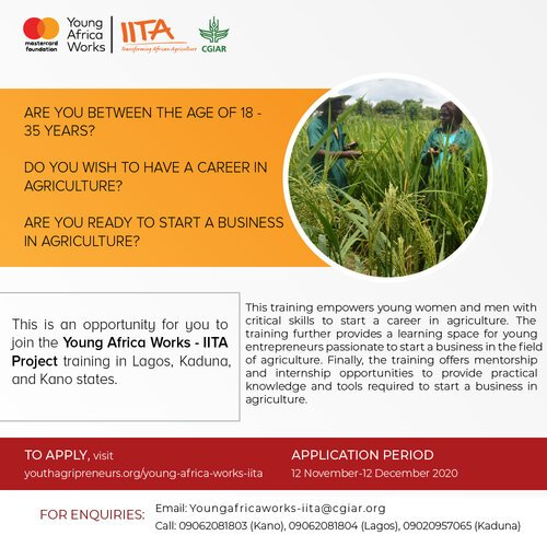 Young Africa Works IITA Project & Training Program 2020 For young Nigerian.