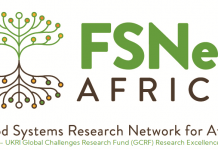 Food Systems Research Network for Africa (FSNet-Africa) Postdoctoral Research Fellowship 2021 (Funded)