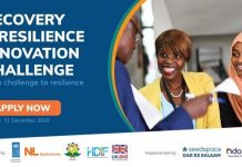 Recovery and Resilience Innovation Challenge 2020/2021 for young Tanzania Entrepreneurs ($10,000 Prize per Startup)