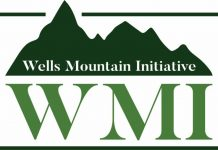 Well Mountain Initiative (WMI) Scholars Program 2021 for Students in Developing Countries
