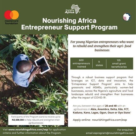 The Nourishing Africa Entrepreneur Support Program 2021 for young Nigerian Entrepreneurs