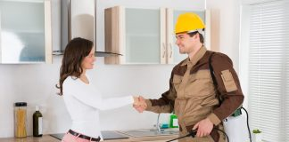 How to Gain a Career in Pest Control