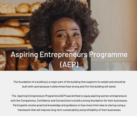 Pan African Women Empowerment Network (PAWEN) 2021 Aspiring Entrepreneurs Program.