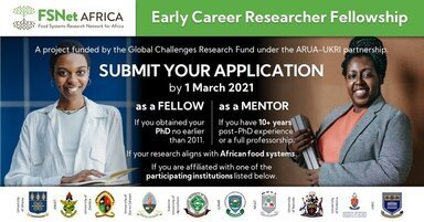 FSNet-Africa Fellowship Programme 2021 for Early Career Researchers