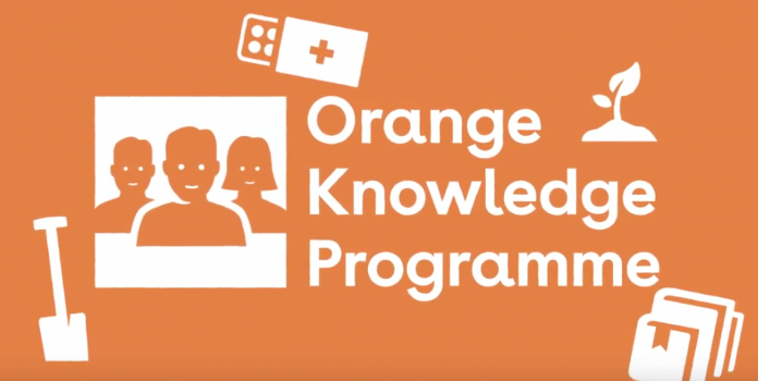 Nuffic Orange Knowledge Programme (OKP) 2021/2022 for study in The Netherlands (Fully Funded)