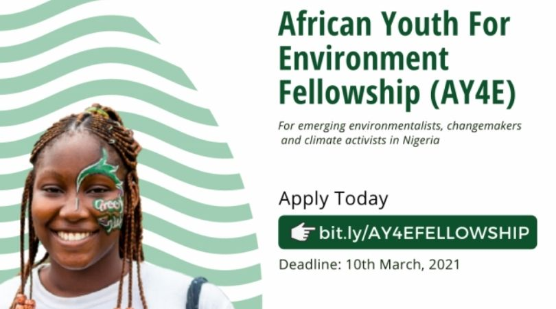 U-recycle Initiative African Youth for Environment (AY4E) Fellowship 2021 [Nigerians Only]