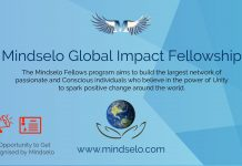 Mindselo Global Impact Fellowship Program 2021