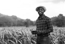 British American Tobacco Nigeria Foundation Farmers for the Future Grant 2021 [Nigerians Only]