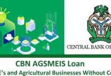 Central Bank of Nigeria (CBN) Agri-Business/Small and Medium Enterprise Investment Scheme (AGSMEIS) 2021 for young Nigerians.