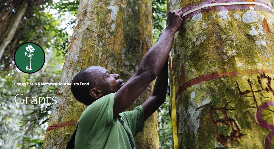 Pulitzer Center Congo Basin Rainforest Journalism Fund 2021 (Up to $7,500)