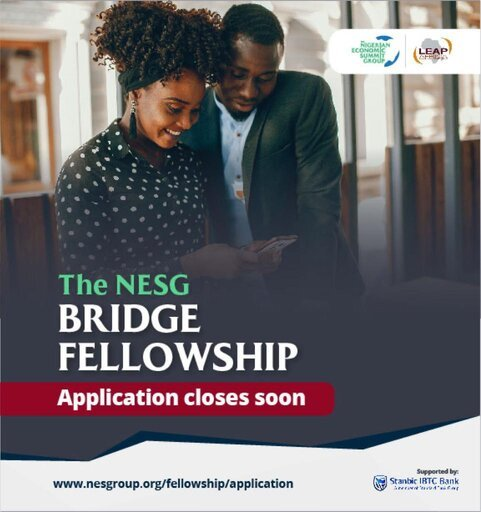 Nigerian Economic Summit Group (NESG) Bridge Fellowship 2021 for young Nigerians.