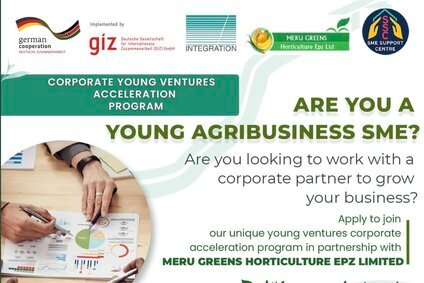 Corporate Young Ventures Acceleration Program 2021- GIZ for young Kenyan Entrepreneurs.