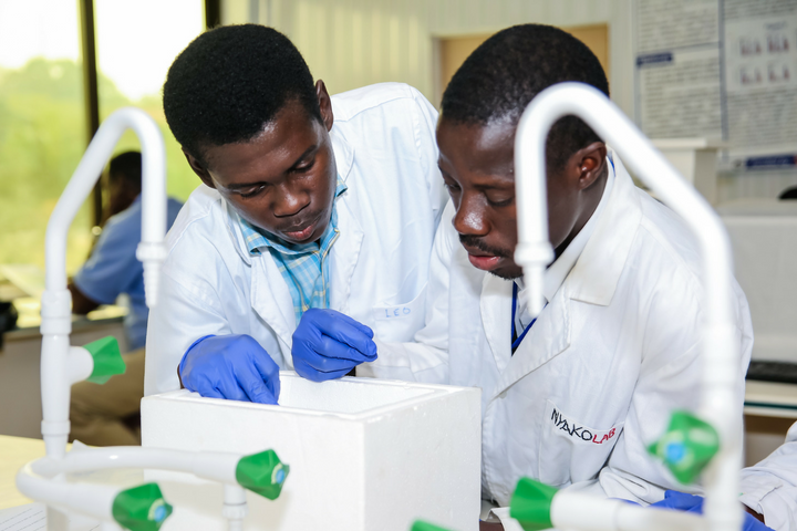 African-German Network of Excellence in Science (AGNES) Intra-Africa Mobility Grants for Junior Researchers 2021